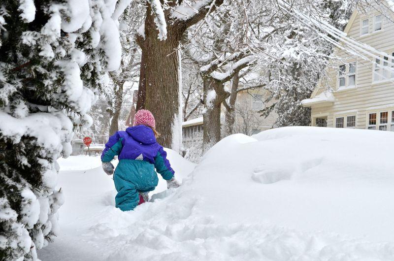 Junebug-snow