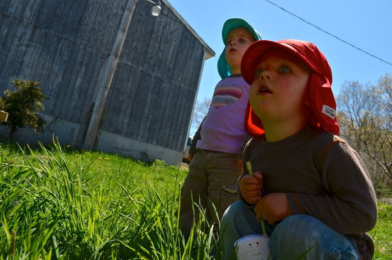 Buckle Farm Twins Visit06