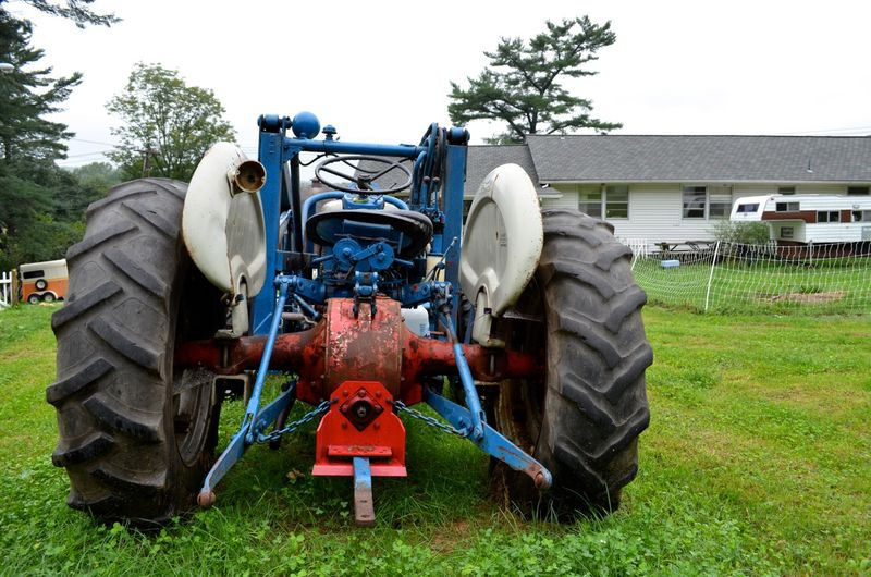 Buttercup raw milk farm sterling ct multiple realities07