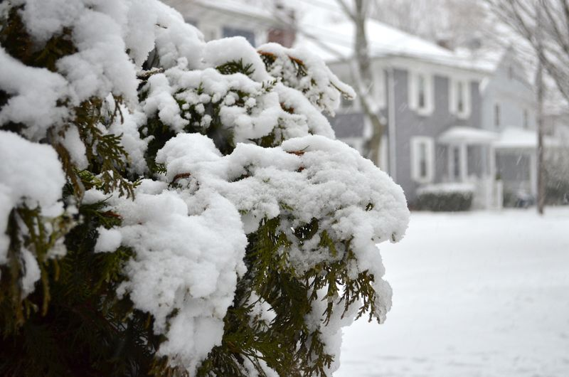 Perseverence-snow-new-england-parenting-multiples-twins